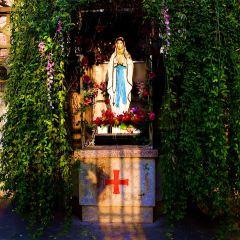 蕪湖天主教堂用戶圖片
