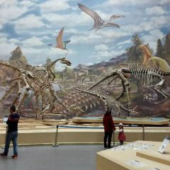 Laiyang Cretaceous National Geopark User Photo