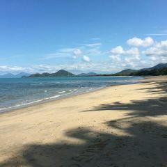 Palm Cove User Photo
