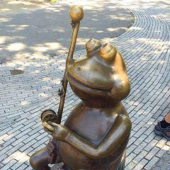 Frog Pond User Photo