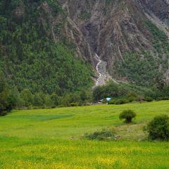 米堆村用戶圖片