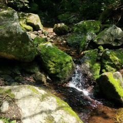 녹석곡 여행 사진