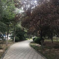 연지 공원 여행 사진