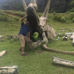 Kualoa Ranch User Photo