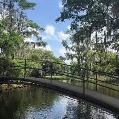 New Orleans City Park User Photo