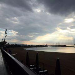 奧林匹克港用戶圖片