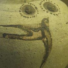 Das Kulturhistorische Museum User Photo