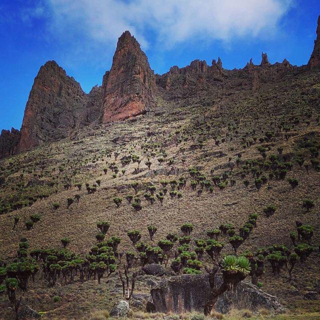 Mt.Kenya National Park