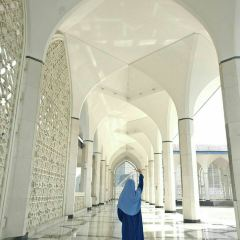 Blue Mosque (Masjid Sultan Salahuddin Abdul Aziz/Biru) User Photo