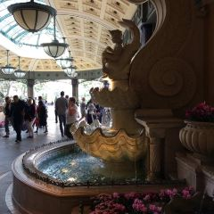Bellagio Conservatory and Botanical Gardens User Photo