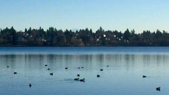 去胡佛水坝经过的一个景点的,停留时间不算长的,但是米德湖的美