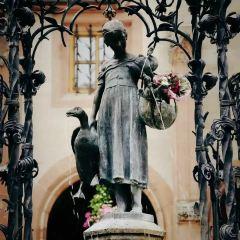 Goose Girl User Photo