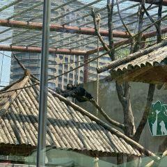 Taihu Long Zhi Meng Amusement Park User Photo