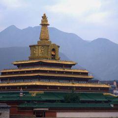Gongtang Baota User Photo
