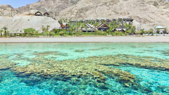 Coral Beach Nature Reserve