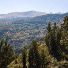 Mount Morgan Goldmine User Photo