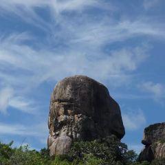 旗岩用戶圖片