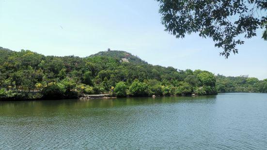 前几天去了,路上在修路,去了龟埕一定要绕湖以及看摩崖石刻登山
