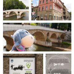 拉丁橋用戶圖片