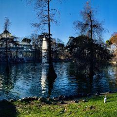 Palacio de Cristal User Photo