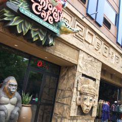 Rainforest Cafe用戶圖片