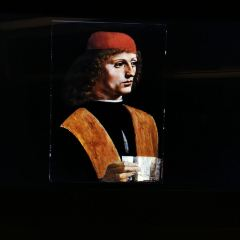 達芬奇大西洋古抄本與安波羅修美術館展覽用戶圖片