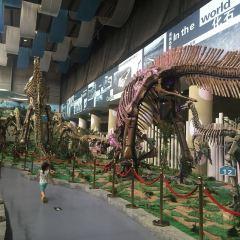 백악기 공룡 지질공원 여행 사진