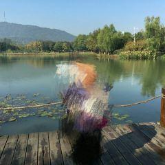 Shufengwan Tiyu Park User Photo