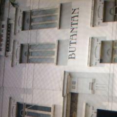 布坦坦研究所張用戶圖片