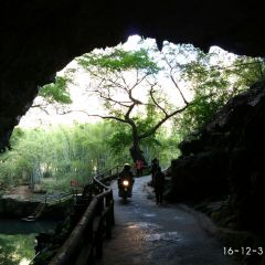 Shiwai Taoyuan User Photo