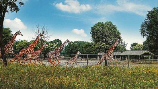 Nguuni Wildlife Sanctuary