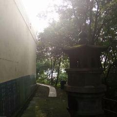 銅山岩用戶圖片