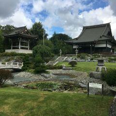 EKO-Haus der Japanischen Kultur e.V. User Photo