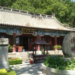 Tianchengsi User Photo