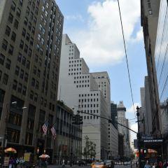 第42街用戶圖片