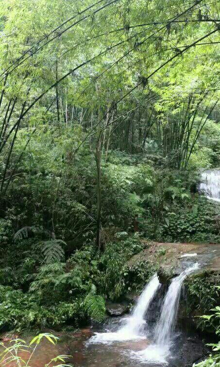 이강원대협곡