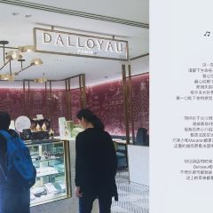 Dalloyau User Photo