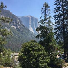 Yosemite Seminars User Photo