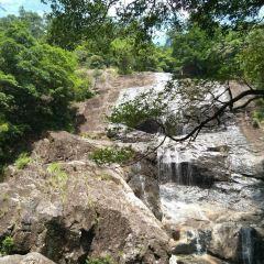 鳳陽山自然保護區用戶圖片