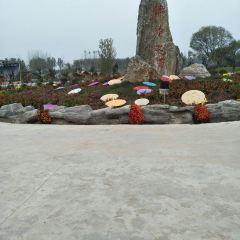Jinyihua Seaview Area User Photo