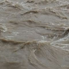 黃河第二磧用戶圖片