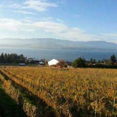 Summerhill Pyramid Winery User Photo