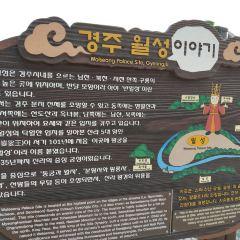 반월성 여행 사진