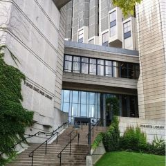 Toronto Reference Library User Photo
