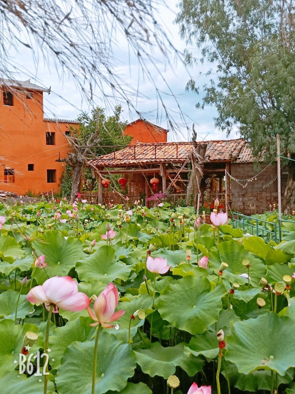 Puzhehei Liu Laosi Farm Tour