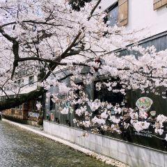 Kiyamachi Street User Photo