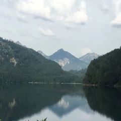 天鵝湖用戶圖片