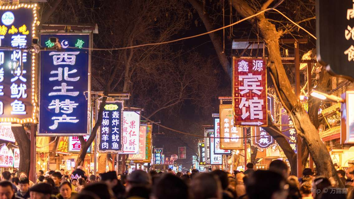 Xian Private Night Tour - Muslim Quarter,Gaojia Courtyard,Big Wild Goose Pagoda North Square,Grand Tang Dynasty Ever-Bright City