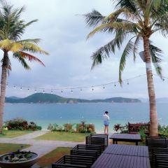 Hon Tam User Photo