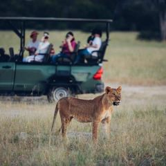 Cango Wildlife Ranch User Photo